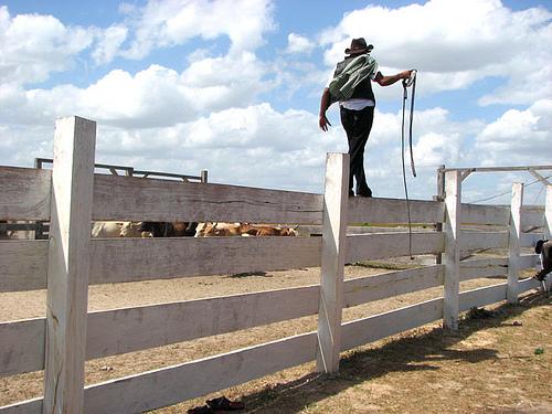 north-rupunini-guyana-rodeo